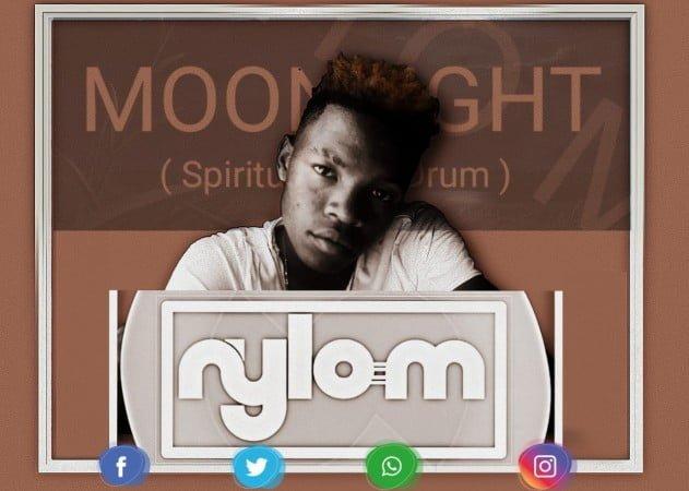 Nylo M - Moonlight (Spiritual Afro Drum) mp3 download