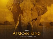2point1 - African King ft. StormRise mp3 download