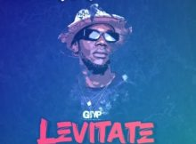 DJ Shoza – Levitate Ft. Natalia Mabaso mp3 download