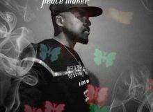 Peace Maker - Dankie Mpilo mp3 download