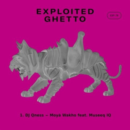 DJ Qness Moya Wakho Ft. Museeq IQ mp3 download