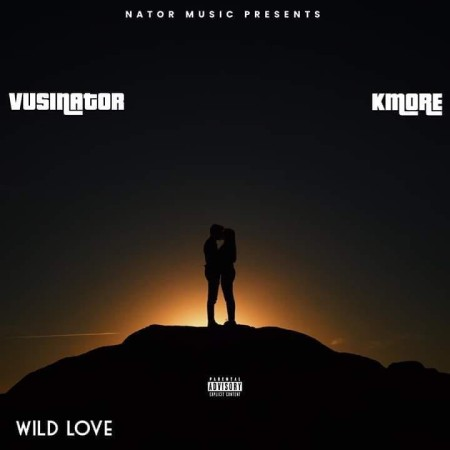 Vusinator Wild Love ft. Kmore mp3 download