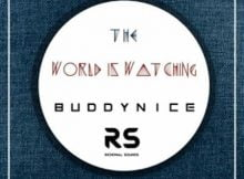 Buddynice The World Is Watching (Redemial Mix) mp3 download