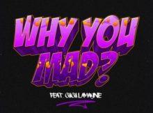 DJ Zan D – Why You Mad Ft. Gigi Lamayne mp3 download