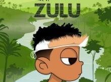Nasty C & DJ Whoo Kid - ZULU (Mixtape) zip mp3 download album