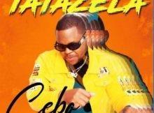 Cebo - Tatazela Ft. DJ Clock, KayGee DaKing & Bizizi mp3 download free