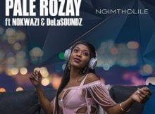 Pale Rozay - Ngimtholile Ft. Nokwazi & DeLASoundz mp3 download free