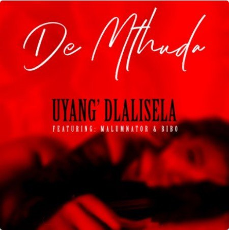De Mthuda - Uyang'dlalisela Ft. MalumNator & Bibo mp3 download free