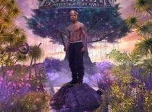 Nasty C - Zulu Man (Song) mp3 download free