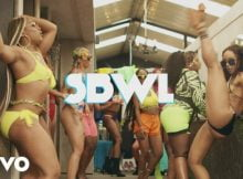 Busiswa ft. Kamo Mphela – SBWL Video mp4 download official