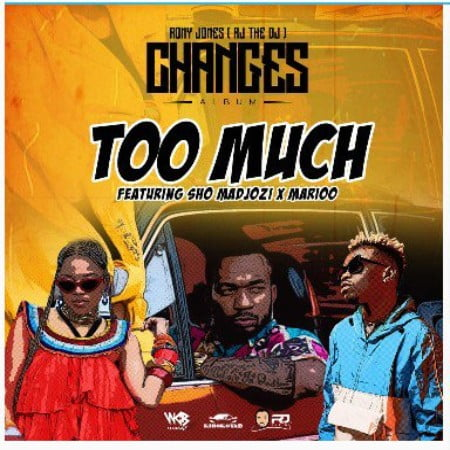Rj The Dj – Too Much Ft. Sho Madjozi & Marioo mp3 download free
