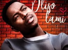 Bhizer - Dliso Lami ft. Fey M mp3 download free