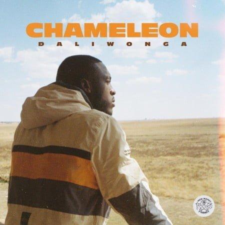 Daliwonga - Chameleon Album zip mp3 download free 2020