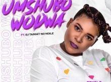 Sdudla Somdantso - Umshubo Wodwa ft. Dj Target no Ndile mp3 download free