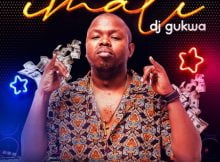 Dj Gukwa - Imali ft. DJ Tira, Dladla Mshunqisi, Emza, DJ Bonnie, Alphalfa mp3 download free