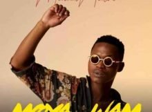 MalumNator – Umlilo ft. De Mthuda & Ntokzin mp3 download free