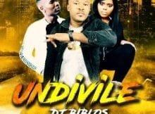 Biblos - Undivile Ft. Pro-Tee & Anelisa Ndlanga mp3 download free