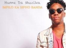 Hume Da Muzika – Impilo Ka Sipho Banda ft. Kabza De Small, DJ Maphorisa & Sipho Banda mp3 download free