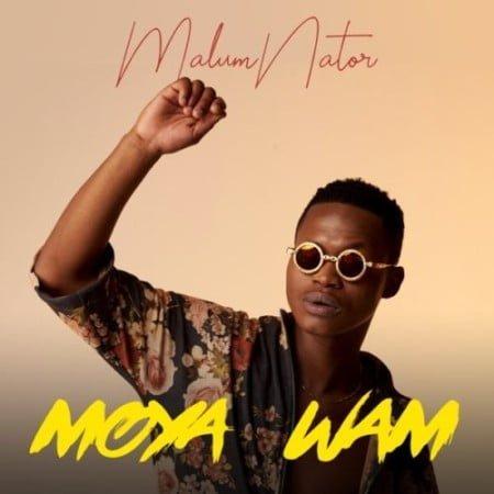 Malumnator – Iy'phuzo ft. De Mthuda & Ntokzin mp3 download free