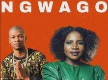Prince Benza – Ngwago ft. Makhadzi mp3 download free
