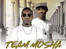 Team Mosha – Shugela ft. Shimza & Twist mp3 download free