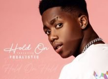 Roiii – Hold On ft. Focalistic mp3 download free