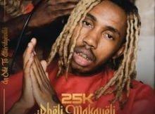 25K – Pheli Makaveli (Intro) mp3 download free