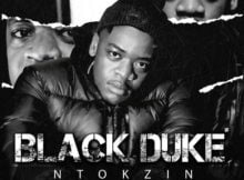 Ntokzin – Ngisize Mdali ft. Boohle, The Majestiez & Moscow mp3 download free