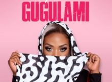 Skye Wanda – Gugulami mp3 download free lyrics