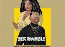 Shuga Cane – Sekwanele ft. Rethabile Khumalo mp3 download free lyrics