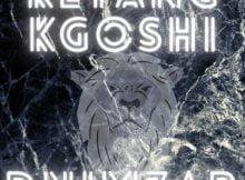 Dnimzar - Kgopela mp3 download free lyrics