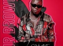 Mr Brown – Dithapelo Ft. Nomcebo Zikode, Master Chuza & Tamy Moyo mp3 download free lyrics