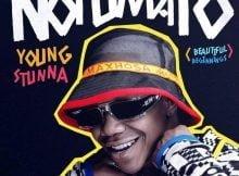 Young Stunna – Ingudu ft. Felo Le Tee, Mellow & Sleazy mp3 download free lyrics
